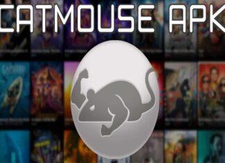 CatMouse APK